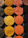 Pulses and Grains at Azadpur Market  Delhi  India