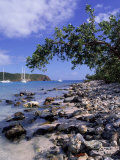 Salt Pond Bay  St John  USVI