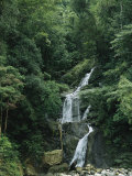 Waterfall Cascading down Rock in a Lush Woodland Setting
