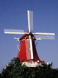Windmill  Aruba