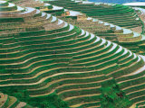 Water Field Rice Terraces in the Mountains  Long Ji  China