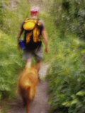 Blurred Image of a Hiker and Dog on a Trail
