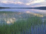 Clouds Reflect in Deadman Lake  Tetlin National Wildlife Refuge  Alaska  USA