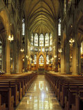 Gothic Interior of the Cathedral Basilica of the Assumption  Covington  Kentucky  USA