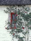 Traditional Cottage  County Mayo  Ireland