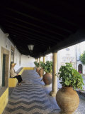 Tourist on Terrace with Striped Cobblestone Floor and Planters  Portugal