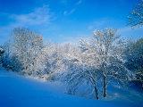 Record Snow in Louisville  Kentucky  USA