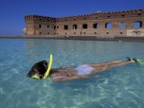 Swimmer at Fort Jefferson  Garden Key  Dry Tortugas  Florida  USA