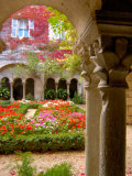 Cloisters at St-Paul-de-Mausole Monastery  St Remy de Provence  France