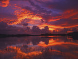 Dawn at Nine Mile Pond  Everglades National Park  Florida  USA