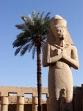 Ramses II Statue and Palm Tree at the Karnak Temple  Egypt