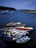 Dinghies in the Harbor  Maine  USA