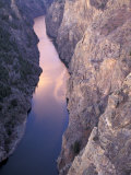 Black Canyon and the Gunnison River  Colorado  USA