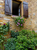 Window of Limestone House  Olingt  Burgundy  France