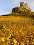 Roche de Solutre above Vineyards  France