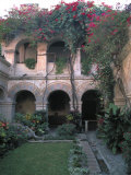 Courtyard of the Camino Real Oaxaca Hotel  Bougainvillea and Garden  Mexico