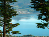 View From Larnach Castle  Oamaru  New Zealand