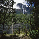 Angel Falls Orinoco Basin Canaima National Park Venezuela