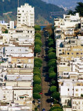 Aerial View of Lombard Street  San Francisco  United States of America