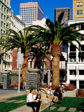 People Sitting in a Garden in Union Square  San Francisco  United States of America