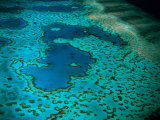 Overhead of Heart Reef  Great Barrier Reef  Australia