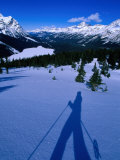 Shadow of a Cross Country Skier on Snow  Banff  Canada