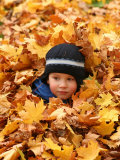 Child Playing in Leaves in Kadriorg Park  Tallinn  Estonia
