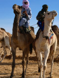 Two Taureg Men on Camels at Sahara Festival  Douz  Tunisia