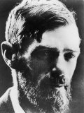 D H Lawrence English Novelist