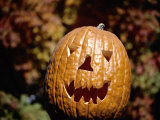 The Toothy Grin of a Halloween Jack-O-Lantern with Seasonal Backdrop