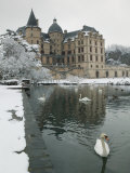 Chateau de Vizille Park  Swan Lake  Vizille  Isere  French Alps  France
