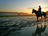 An Unidentified Horse and Rider on the Track at Belmont Park in Elmont  New York  June 9  2006