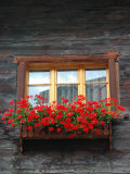 Window Box with Flowers  Zermatt  Switzerland
