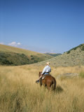 A Cowboy Rides His Horse Looking for Cattle on His Land