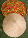 Thai Chile Peppers and Traditional Hat  Isan Region  Thailand