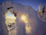 Sunset Thru the Snowghosts  Big Mountain  Whitefish  Montana  USA