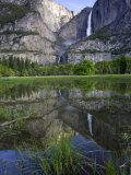 Yosemite Falls  California  USA