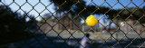 Tennis Ball Stuck in a Fence  San Francisco  California  USA