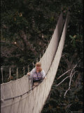 A Biologist Observes the Forest Canopy by Walking Along a Suspended Walkway