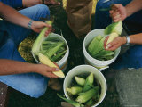 A Family Shucks Sweet Corn on Their Family Farm