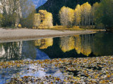 Autumn View Along the Merced River
