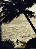 Silhouetted Man and Palm Tree