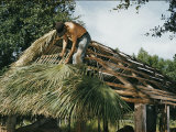 Seminole Indian Thatching a Chickee with Palm Fronds