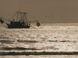 A Silhouetted Fishing Boat Hauls in a Net on a Silvery Sea