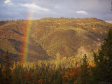 A Rainbow Arches over a Clearcut in the Stanislaus National Forest