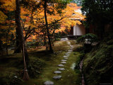 A Stone Path Leads to a Small Temple Pavilion