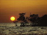 Sunrise in Everglades National Park  Florida
