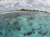 Fisheye View of the Islands Shoreline with Fat Clouds Overhead