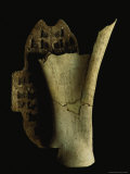 A Shang Diviner Used This Turtles Shell and Ox Bone to Make Predictions