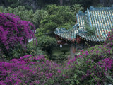 Formal Gardens Around Tile Roofed Chinese Style Building
